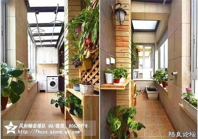 阳台的绿植和阳光房似的装修